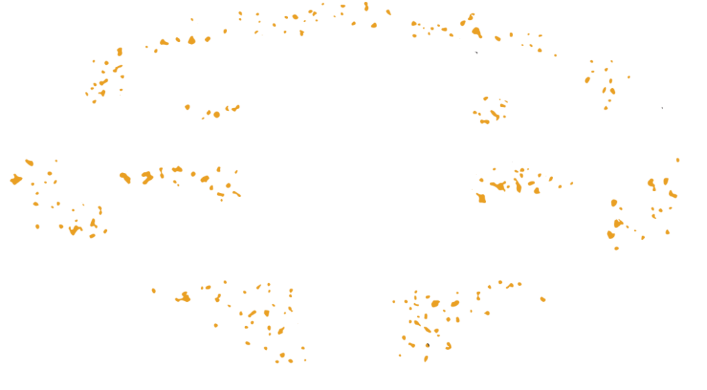Carnegie Carnival King and Queen