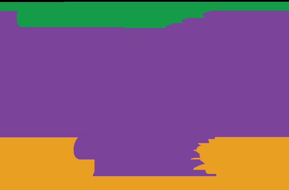 Carnegie Carnival History